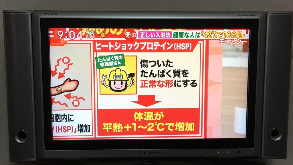 日本電視節目介紹HSP