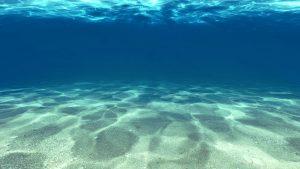施特佩HSP扭轉奇肌植萃泥膜久米島海洋深層水
